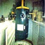 Il nocciolo del reattore nucleare